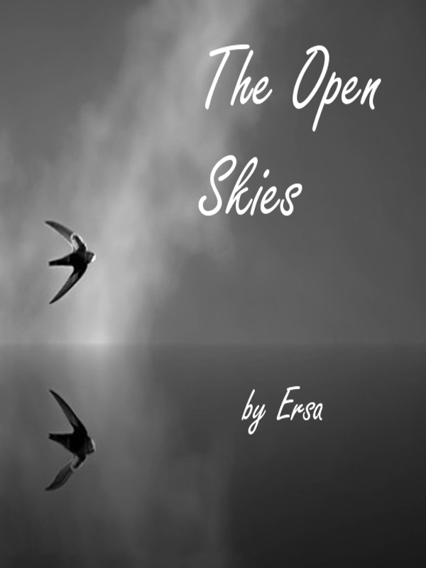 The Open Skies Cover