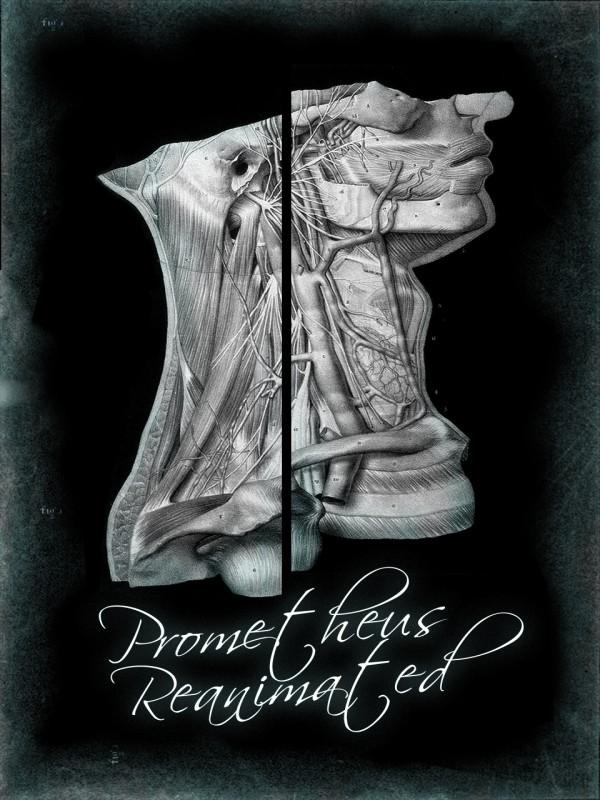 Prometheus Reanimated Cover